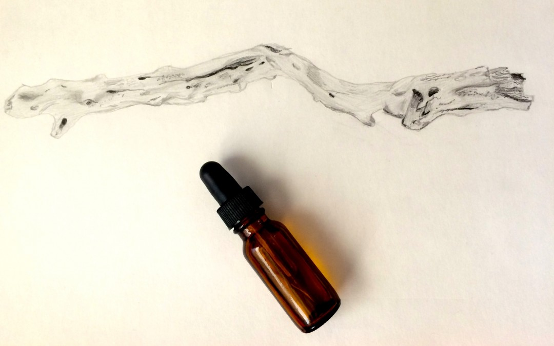 Simple DIY Oil Cleanser and Makeup Remover