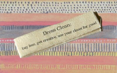 Quit Fast Fashion, Part II: Dress Clean!